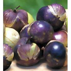 Физалис Пурпурный