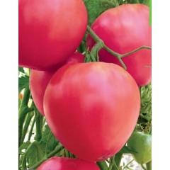 Бычье Сердце Розовое
